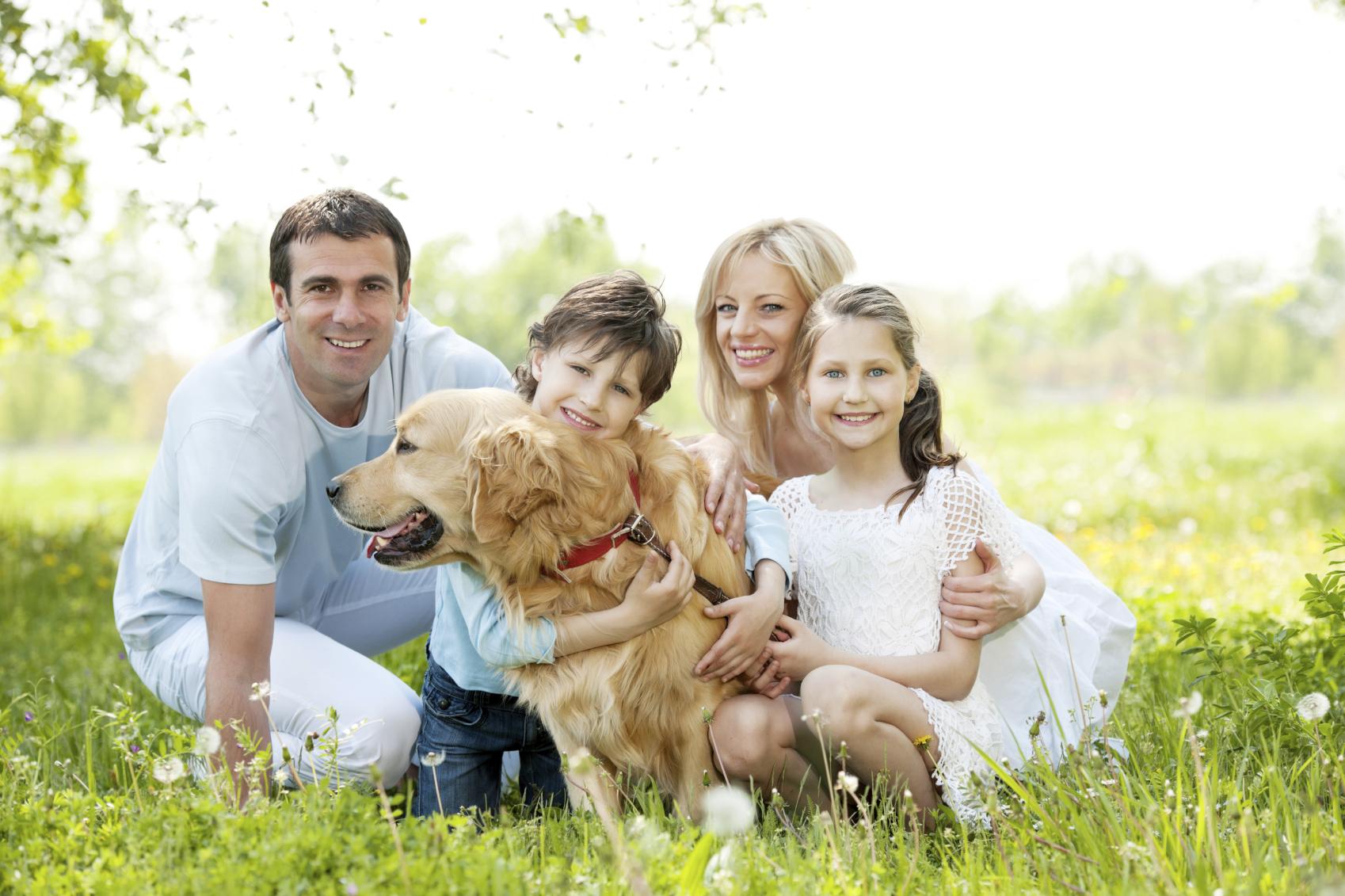картинки семья собака дом