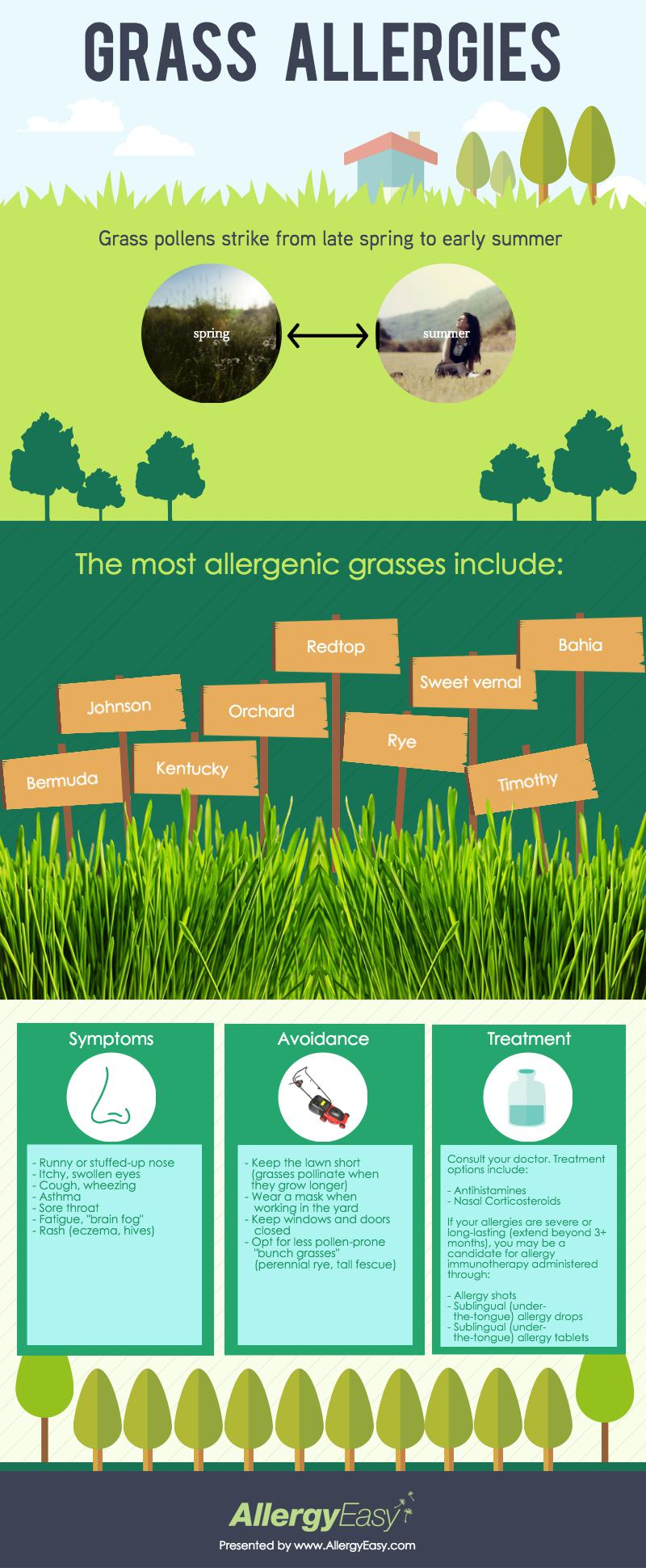 grass allergies