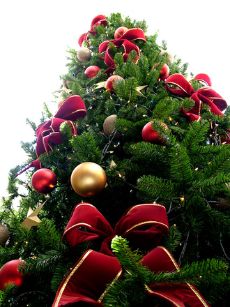 christmas-tree-could-make-you-sick