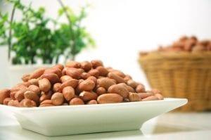 Nut Allergy Treatment