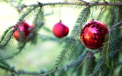Allergic to Your Christmas Tree?