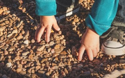 A Link Between Autism and Food Allergies
